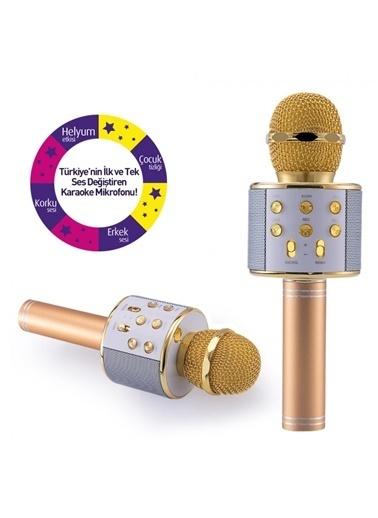 Goldmaster Goldmaster Idance Solist Karaoke Mikrofon Renkli